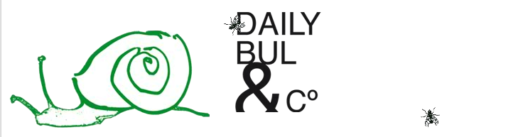 Centre Daily-Bul & C°